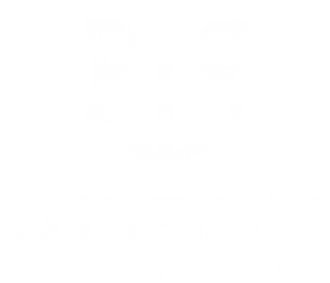 ADFOX Marketing Digital